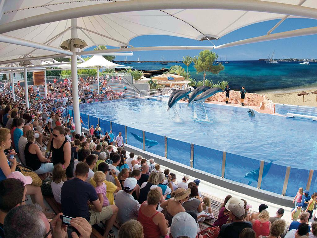 Mallorca nyaralás és delfin show!