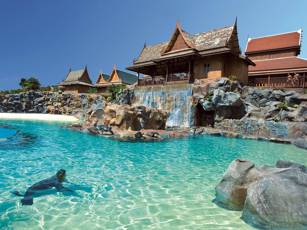 Die Wasserparks von Teneriffa, inklusive Tickets für das Aqualand und den Siampark