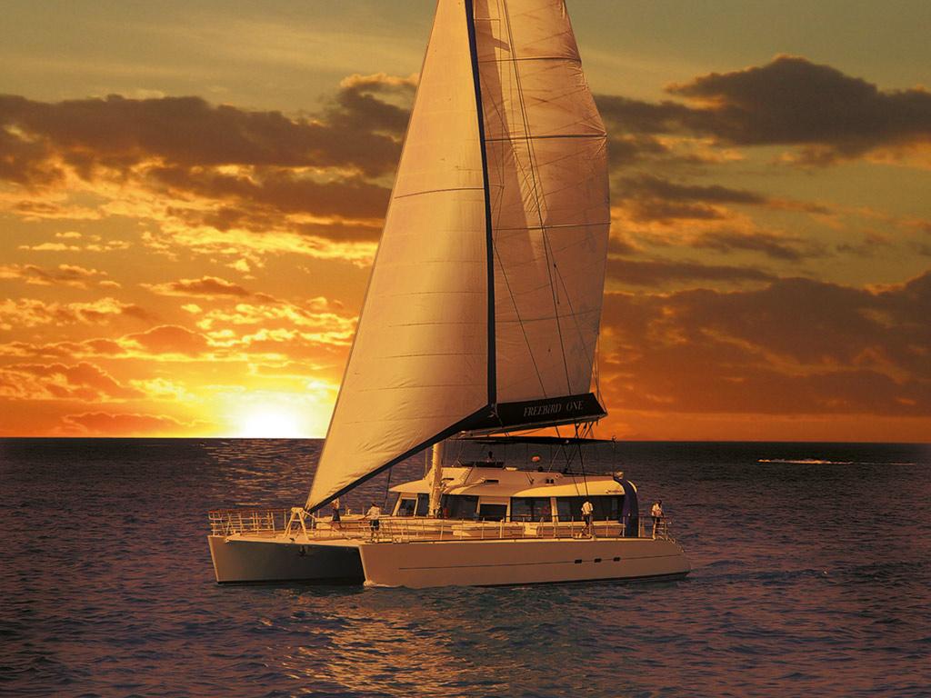 Oferta especial: Catamarán Freebird - Paseo con recogida en hoteles del sur