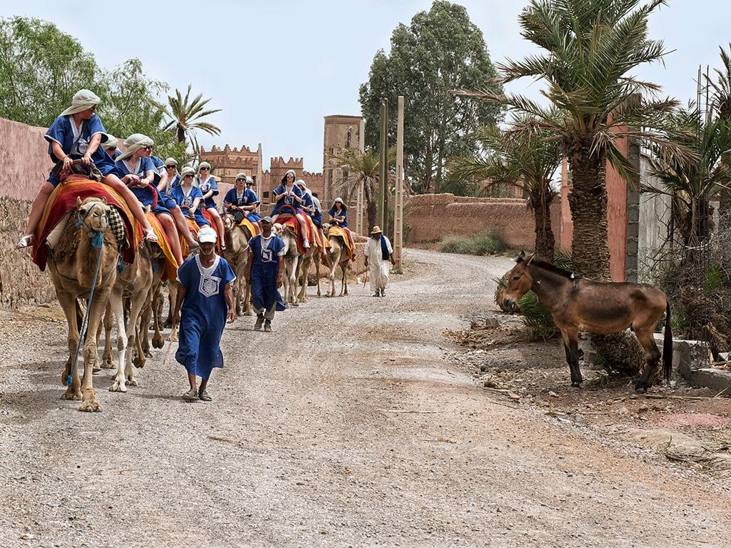 Marrakech: La Ciudad de las Mil y una Noches Incluido Ruta de Camello