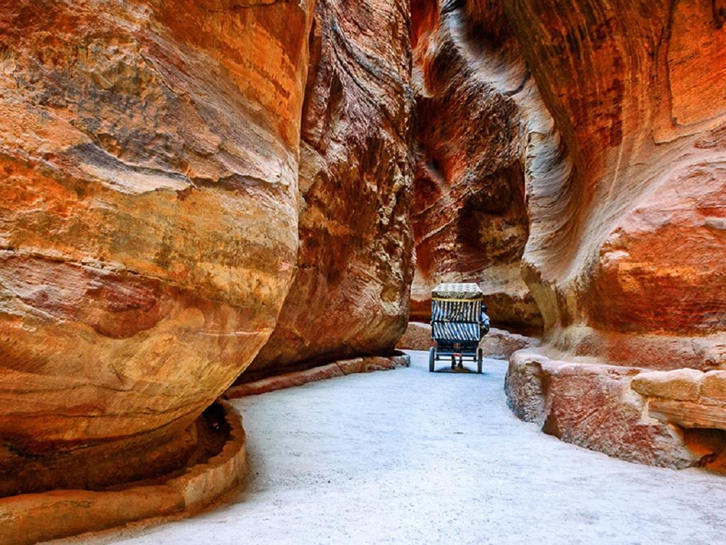 Petra Full-Day Visit With Return Transfer