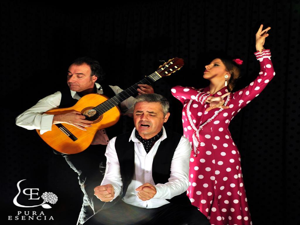 Pura Esencia: espectáculo de flamenco en primera fila